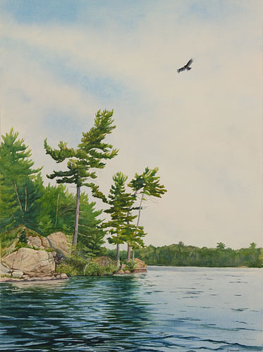 featured paintings by debbie homewood  canadian watercolor