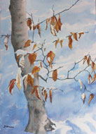 watercolour  Last Leaves